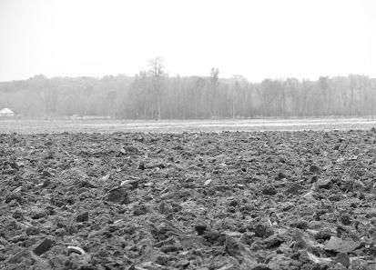 plowed-dirt