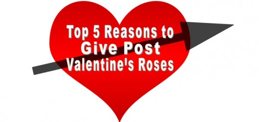 valentines-lover
